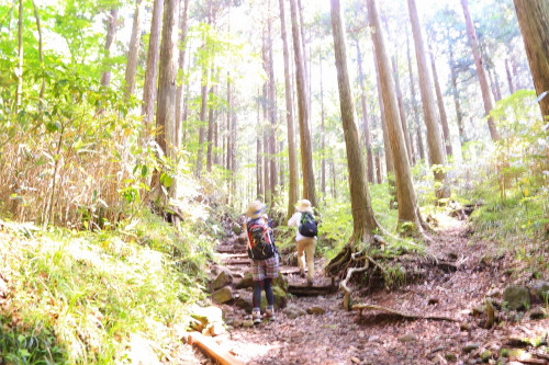Img_2057kintokiyama