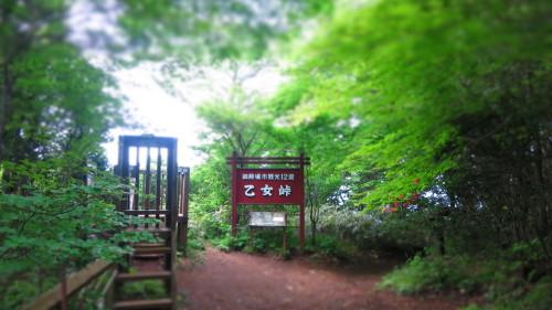 Img_3986kintokiyamakintokiyama