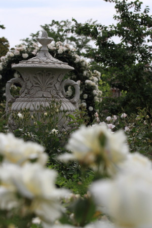 Img_0170rose_gardenrosegarden