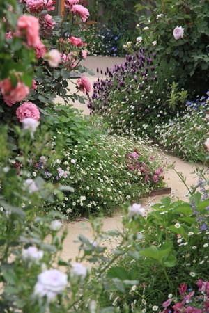 Img_0292rose_gardenrosegarden
